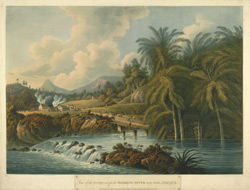 View Of The Bridge Across The Roaring River Near Bath, Jamaica